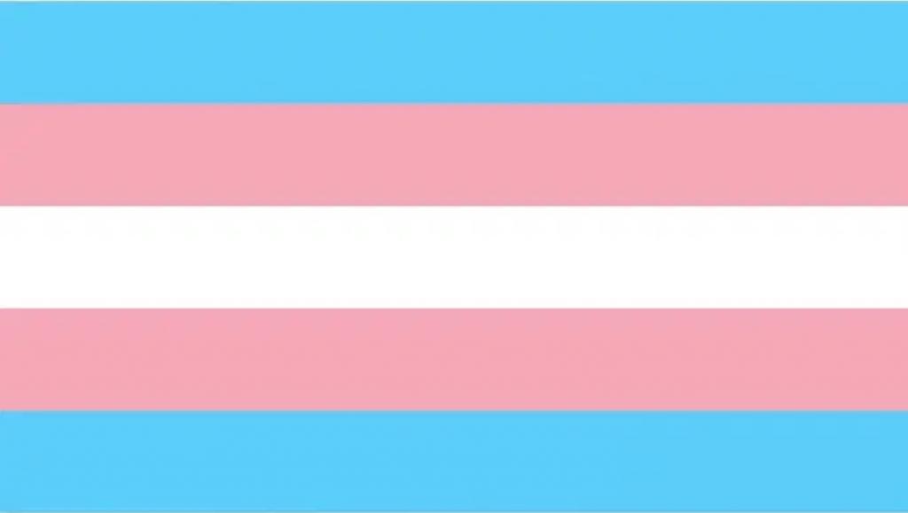 A visibilidade do profissional Trans
